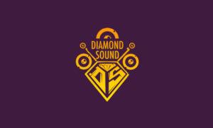 pap-krast-creations-corporate-identity-brand-design-client-diamond-sound-wattville