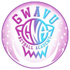 papkrast-group-client-gwavu-netball-academy